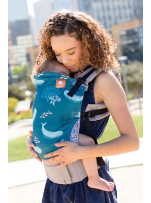 Narwhal - Tula ergonomic standard carrier
